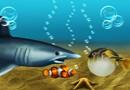 Pescuieste dupa Nemo Jocuri Pescuit